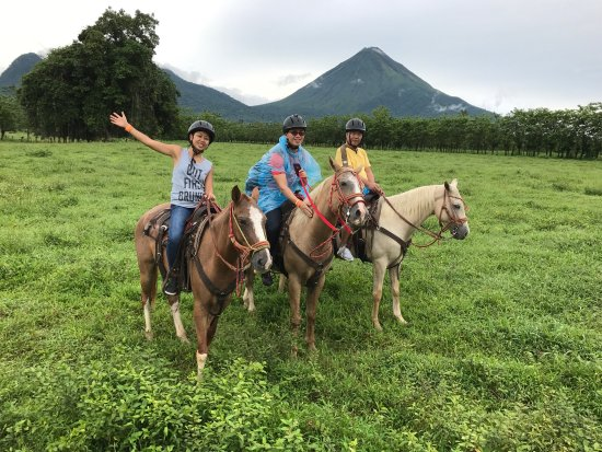 Alberto's Horses: photo0.jpg