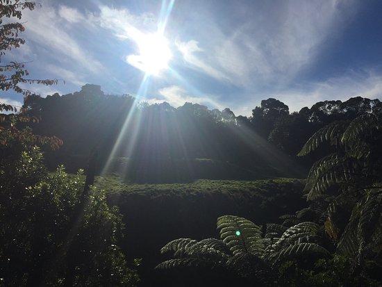 Нью-Плимут, Новая Зеландия: photo1.jpg