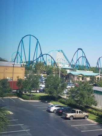 SpringHill Suites Orlando at SeaWorldR Picture