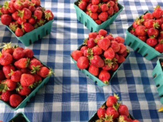 Warsaw, Nova York: Already Picked Strawberries