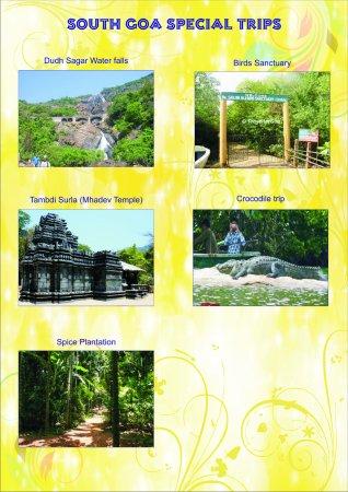 Anjuna, India: DUDH SAGAR WATERFALL & SPOCE PLANTATION SIGHTSEEING