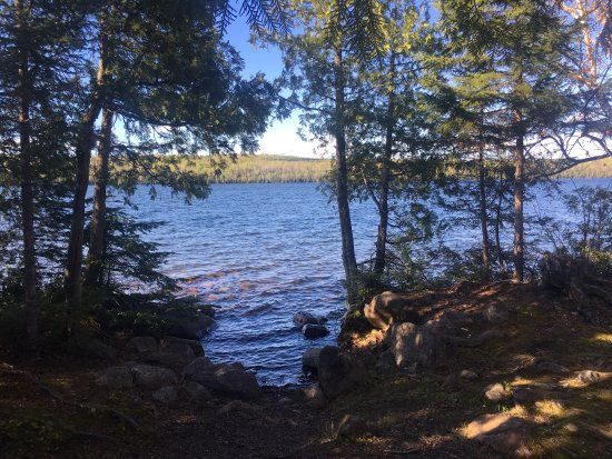 Trout Lake Resort: photo1.jpg