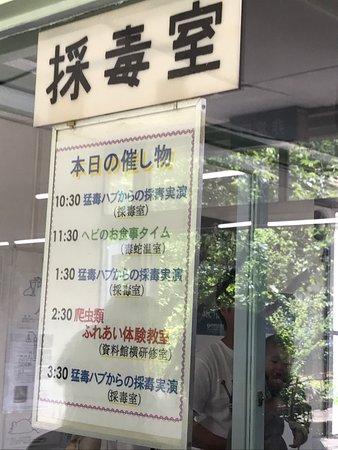Japan Snake Center : photo2.jpg