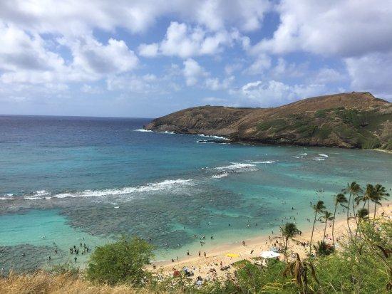 Oahu Grand Circle Island Tour: photo0.jpg