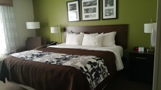 AmericInn Lodge & Suites Shakopee - Canterbury Park: Very comfortable bed