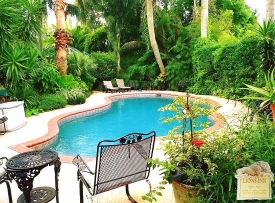 Lions Inn Bed & Breakfast : Pool