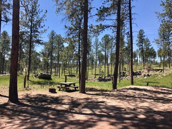 Big Pine Campground: photo0.jpg