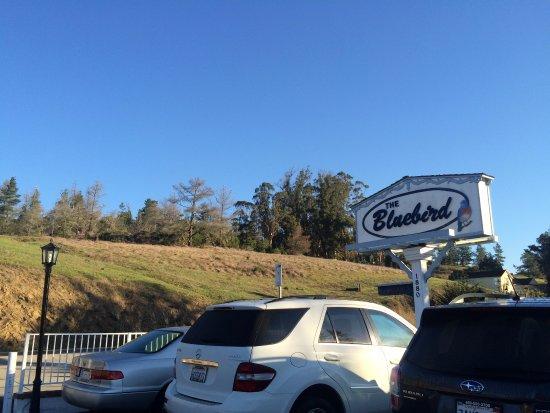 Bluebird Inn Photo