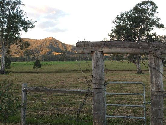Kyogle, Australia: photo3.jpg