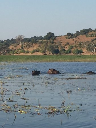 Sanctuary Chobe Chilwero Picture