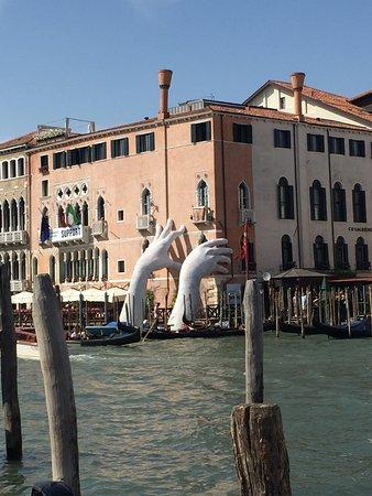 La biennale di venezia picture of venice biennale for Artisti biennale venezia