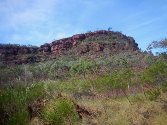 Northern Territory, أستراليا: Good picnic area with walking trail, between Victoria River and Katherine