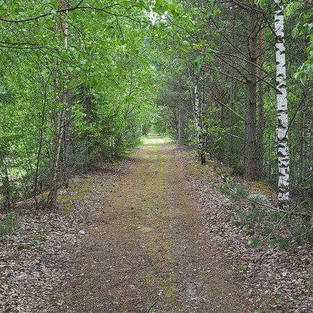 Ringebu Municipality, Norway: IMG_20170604_111619_551_large.jpg