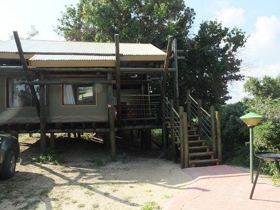 Tamboti Satellite Camp Parque Nacional Kruger 193 Frica