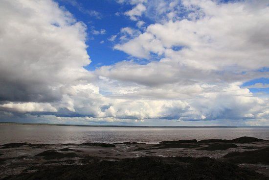 Hopewell Rocks: photo0.jpg