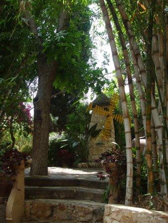 Домашний садик-парк