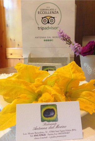 Sant'Agata Feltria, Italia: Primi fiori di zucchi direttamente dal nostro orto