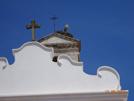 Old Town Faro : Stork