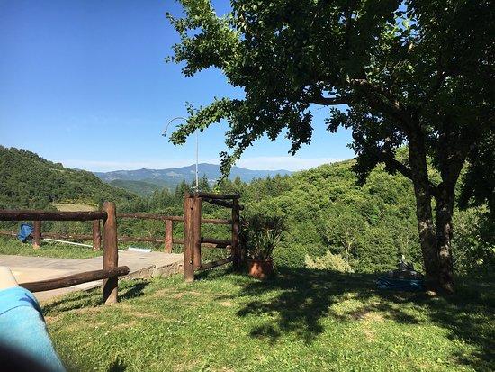 Bio Agriturismo Il Vigno: un posto incantevole... i proprietari Giulio ed Alice sono all'altezza del posto, per la loro os