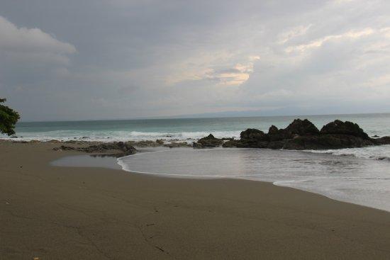 Lapa Rios Ecolodge Osa Peninsula : Matapalo tour beach