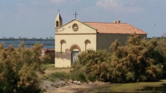 Rosolina, Italia: La struttura vista dalla strada