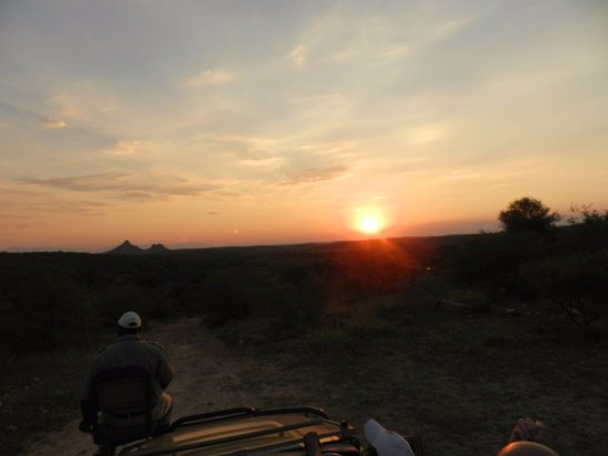 Balule Nature Reserve, South Africa: Sonnenuntergang auf der Safari