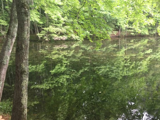 Marietta, GA: Sibley Pond