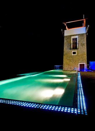 ماونت هارتمان باي إستيت: The infinity pool overlooking the bay with swim up bar.