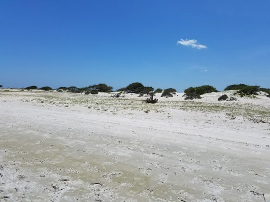 Beaufort, Carolina do Norte: Nice wide beach