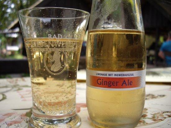 Brandeburgo, Alemania: Ginger Ale 0,25l 2,45 Euro .