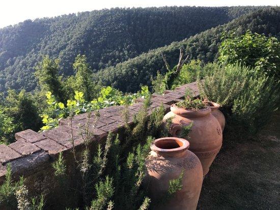 Castiglioncello del Trinoro, Italië: photo3.jpg