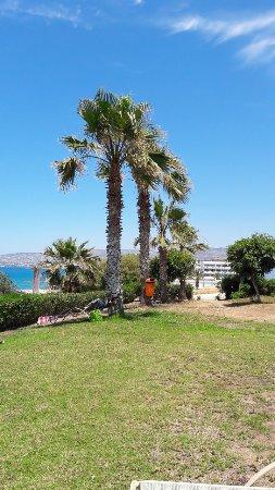 Eleni Holiday Village-billede