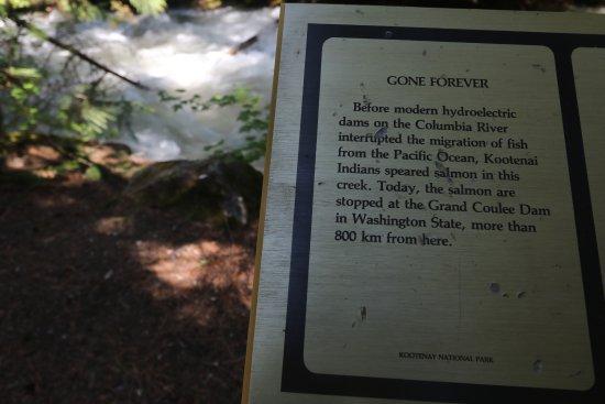 Kootenay National Park, Canada: many informative signs along the trail