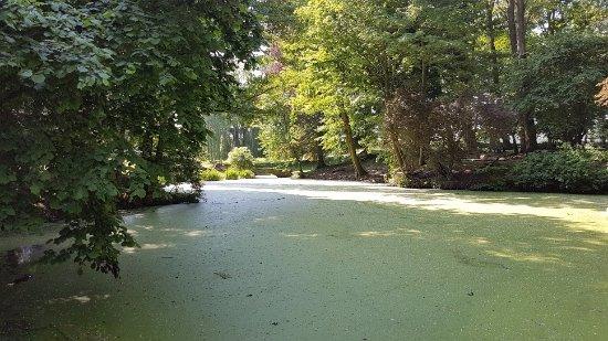 Kasteelhof 't  Hooghe : Gardens