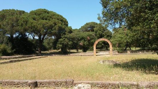 Parco Urbano Pineta di Castel Fusano