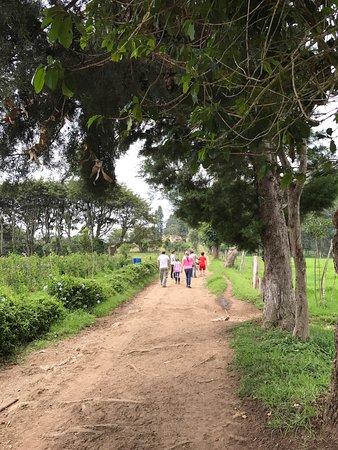 Sumpango, Γουατεμάλα: photo5.jpg