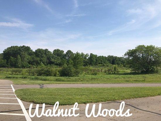Walnut Woods Metro Park