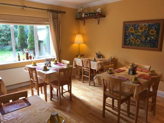 Amber Heights Guesthouse: Äusserst saubere, liebevoll geführte Unterkunft. Es fehlt an nichts. Frühstück reichlich und seh