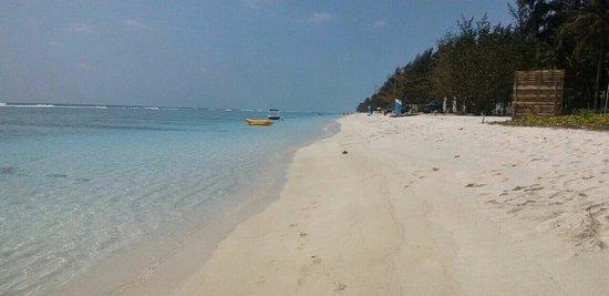 Kaafu Atoll: пляж