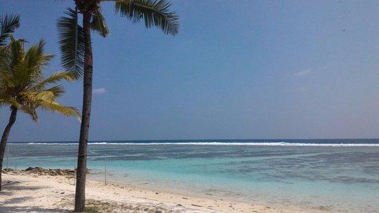 Atolón Kaafu: пляж