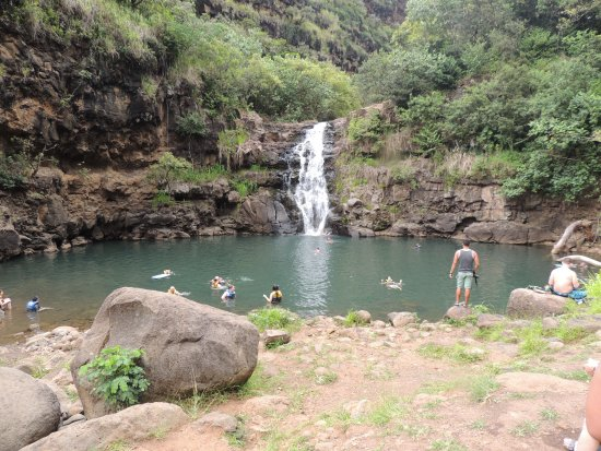 KOS Tours : Waimea Waterfall