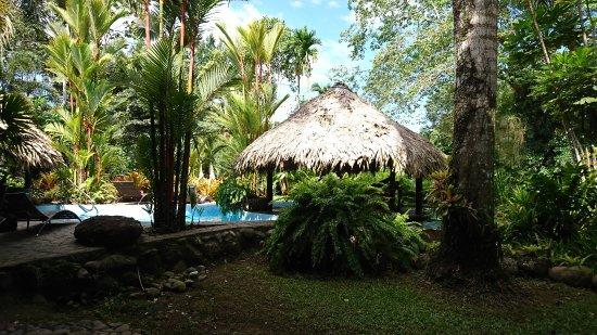Hotel Banana Azul Picture