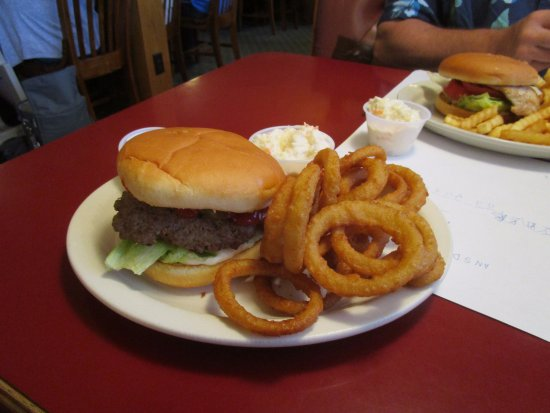 Rochester, IN: hamburger and onion rings