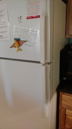 Old fridge with free rust.