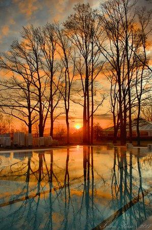 Koson, Ukraina: Бассейн с пресной холодной водой. Она не подогревается. Поэтому приятна только летом.