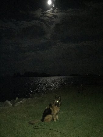 Sportsman's Lodge: This is a lovely moonlit view from Sportsmans Lodge on the beautiful Indian river. Very special!