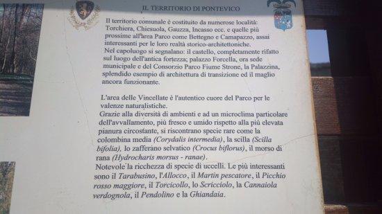Pontevico, Italy: Breve legenda ufficiale