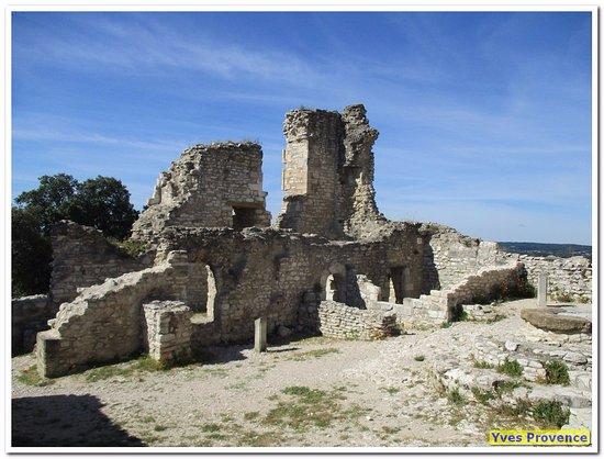 Chateau de Thouzon