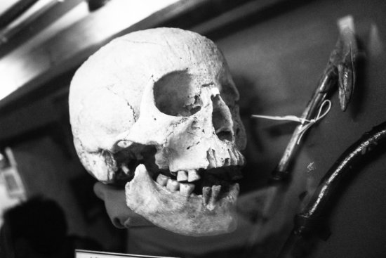 The Museum of Witchcraft and Magic: skull