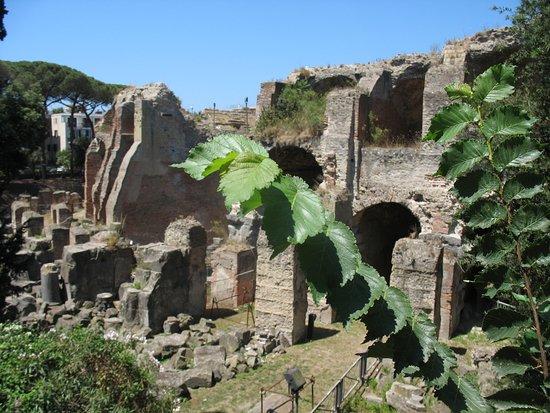 Flavian Amphitheater: Dall'esterno